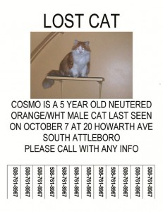 Lost Cosmo