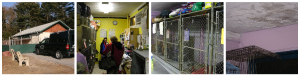 New Attleboro shelter.