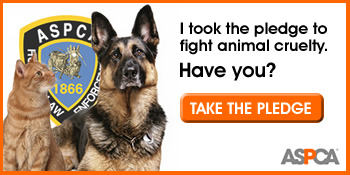 ASPCA Badge