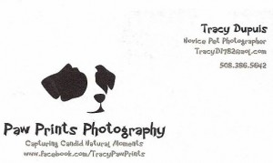 Paw Prints photography
